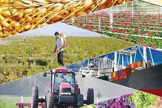 بلایی که بر سر صادرات محصولات کشاورزی آوردیم!